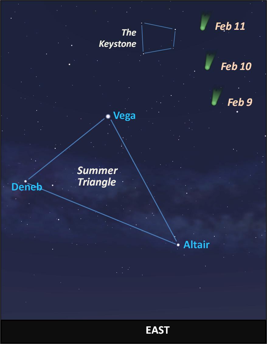 A comet in the February pre-dawn sky