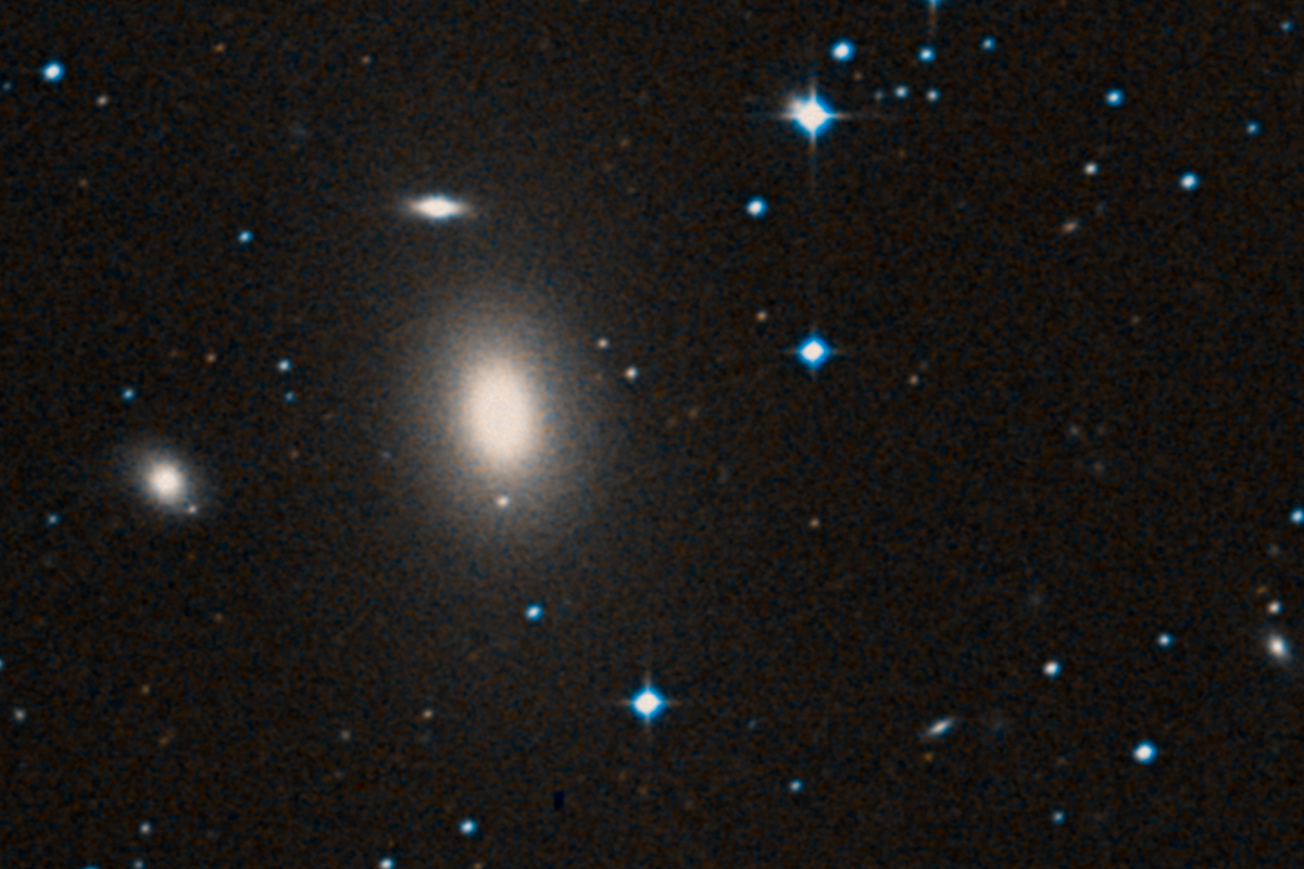 Elliptical galaxy NGC 1600