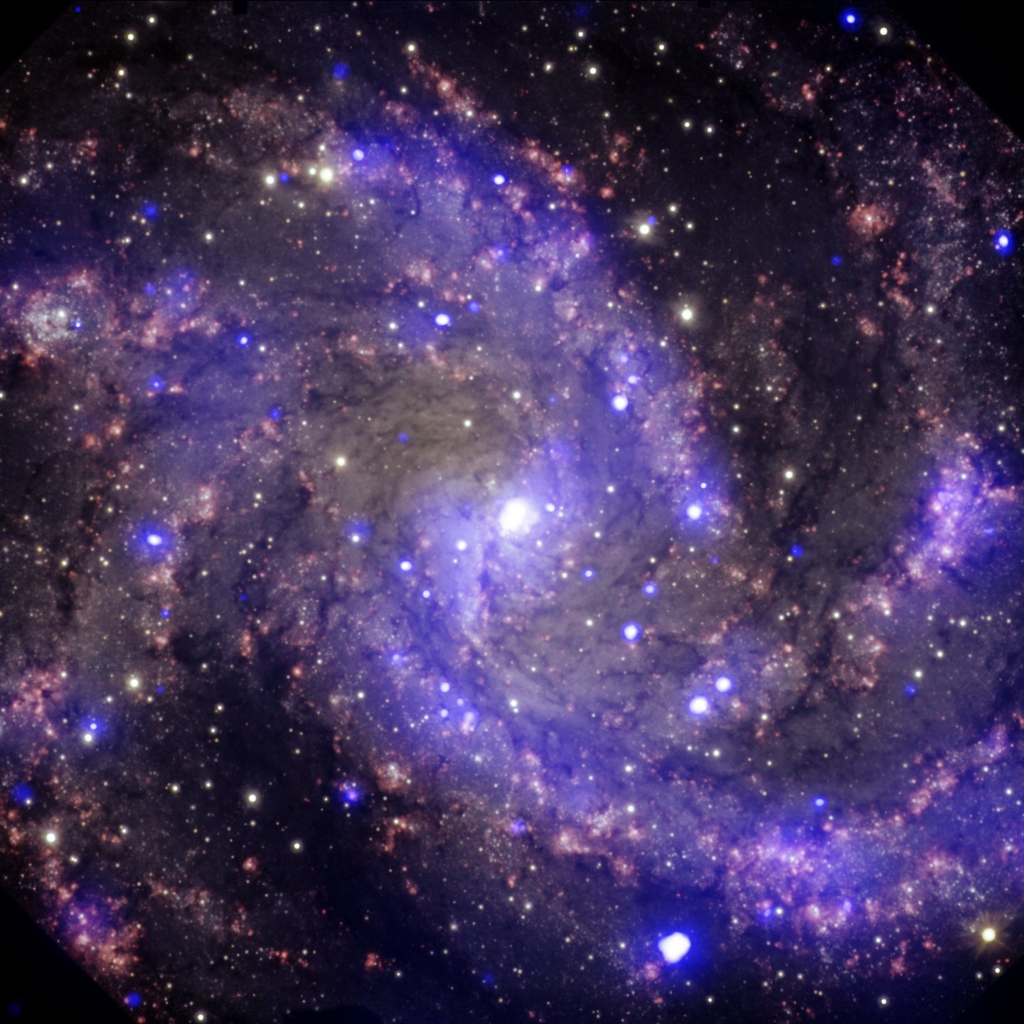 Multi-wavelength view of NGC 6946, the Fireworks Galaxy