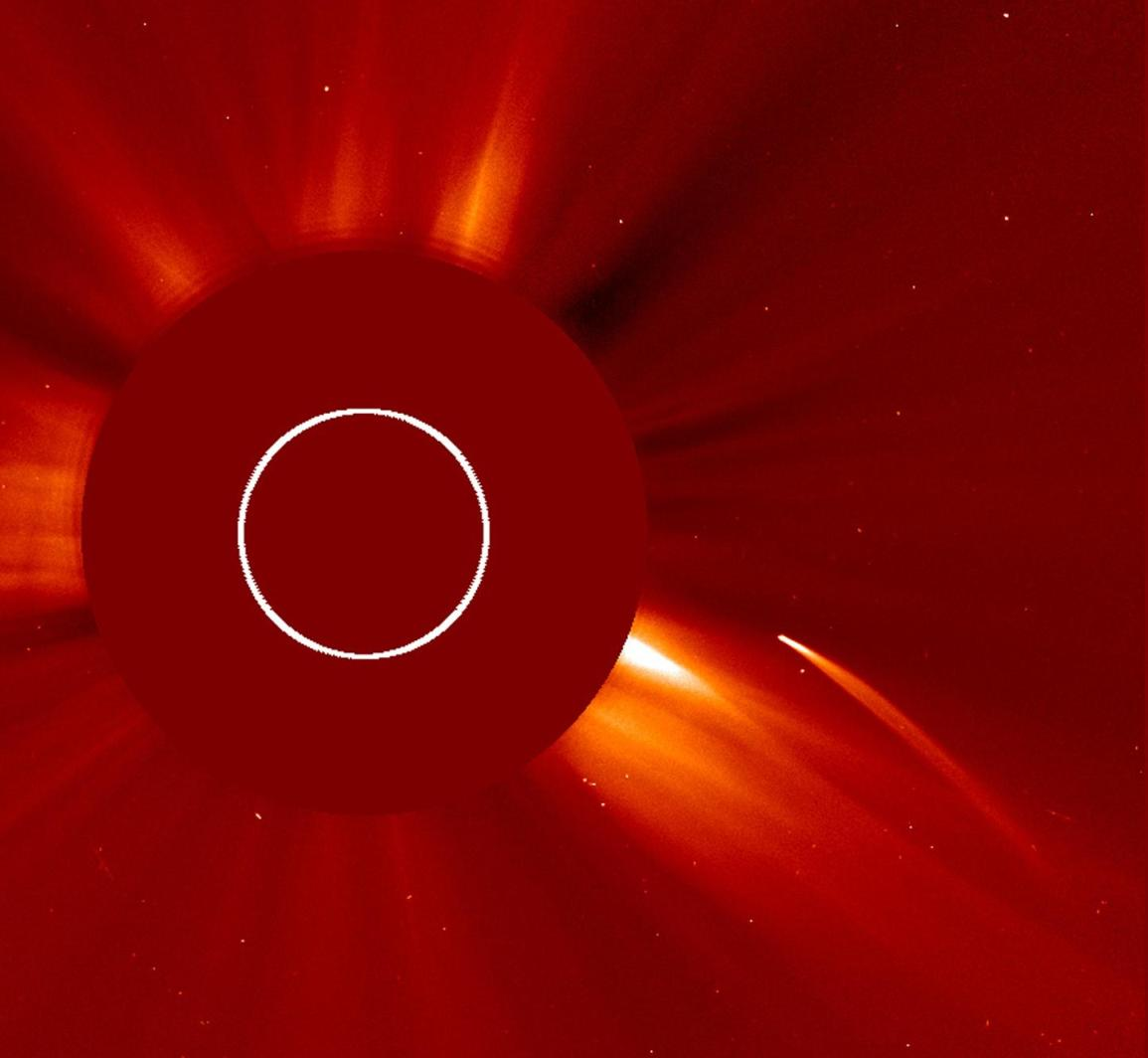 View of a doomed comet approaching the Sun