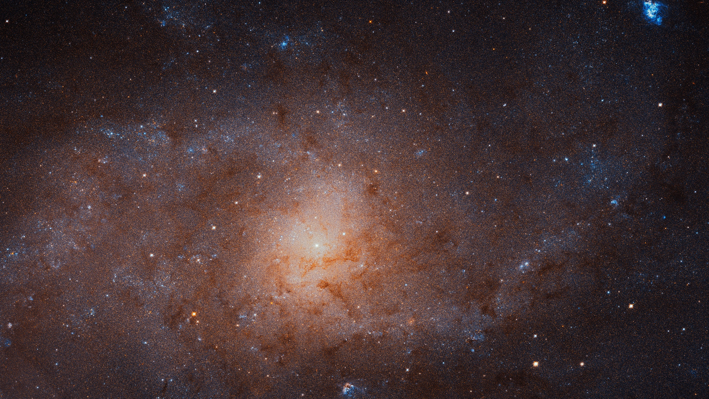 Hubble Space Telescope view of the Triangulum Galaxy