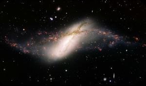 The odd galaxy NGC 660