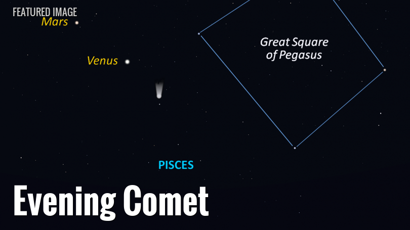 Encke's Comet in mid-February