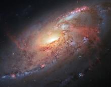 Multi-wavelength view of Messier 106