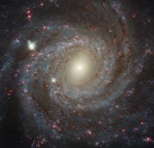 Hubble Space Telescope view of NGC 3344