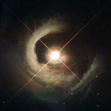 V1331 Cygni, a newly forming star